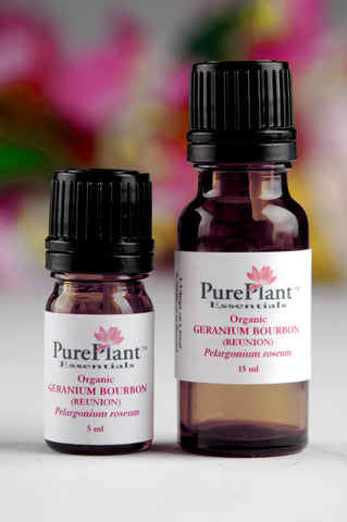 Geranium Bourbon (Reunion) Pelargonium Graveolens - Steam Distilled Leaf, Madagascar - 10% Dilution Light Coconut Oil-Single Pure Essential Oil-PurePlant Essentials