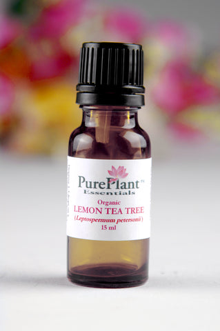 Lemon Tea Tree Essential Oil, Leptospermum petersonii - Australia - SAVE 50% OFF!-Single Pure Essential Oil-PurePlant Essentials