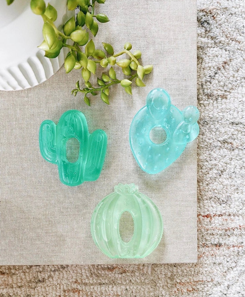 itzy ritzy cactus water filled teethers