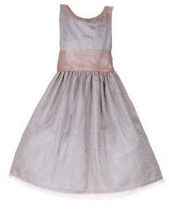 Rose and Silver Mesh Dress