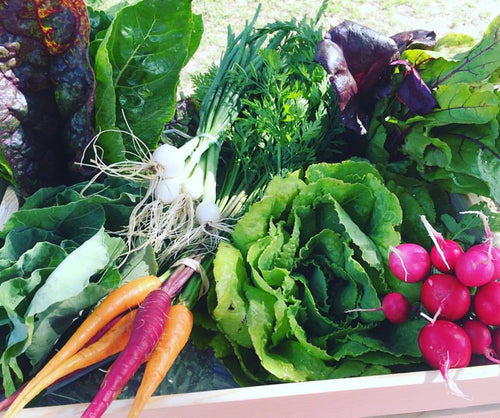 Farmily Share (CSA Box)