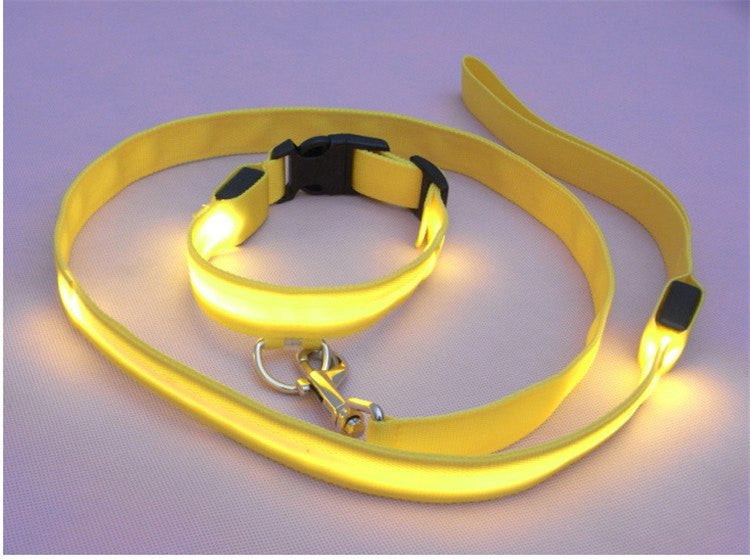 Night Safety LED Dog leash