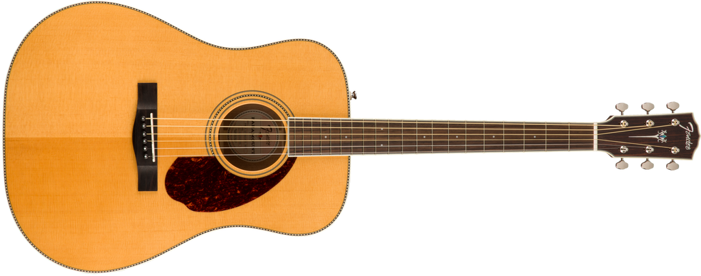 PM-1 Standard Dreadnought with Case