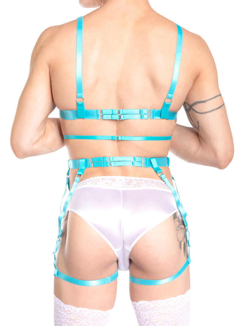 Men's blue bra and garter harness