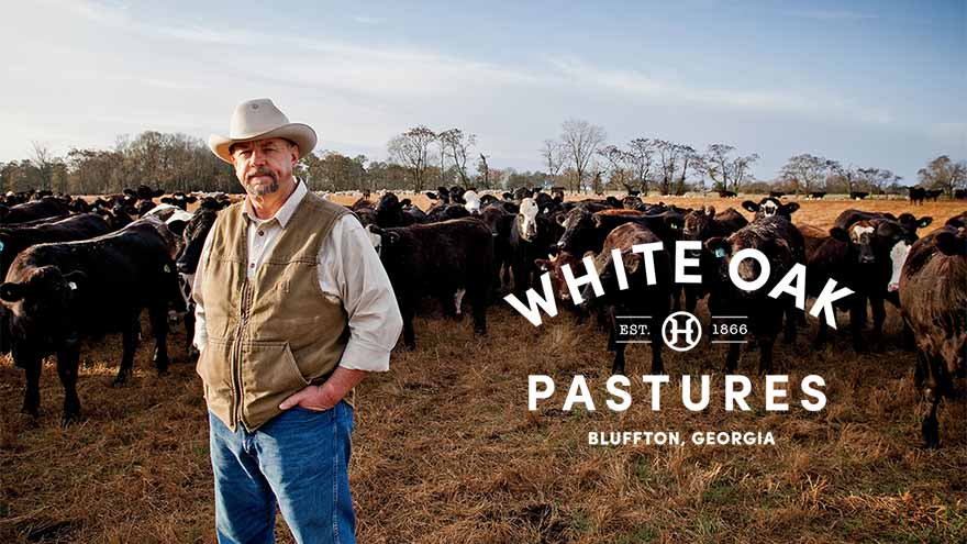 White Oak Pastures: Radically Traditional Farming