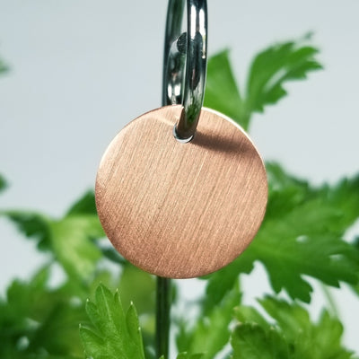 Laser Engraved Copper Garden Markers, Plant Tag, Gift for Gardener, Herb ID Labels with Swirly Stakes, FAM10038