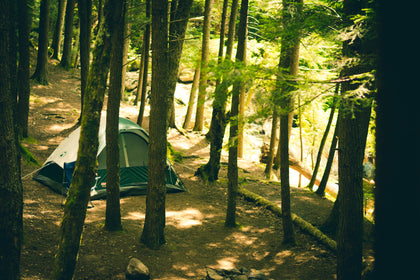Camping / Outdoors