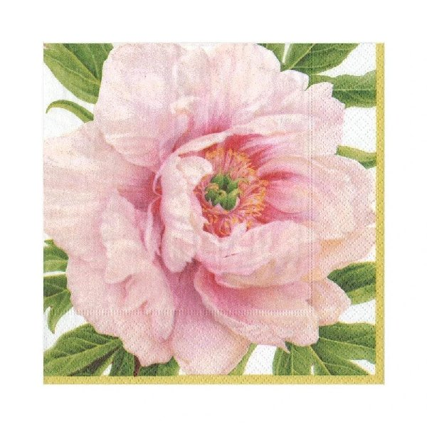 Blush Luncheon Napkins - Boutique Marie Dumas