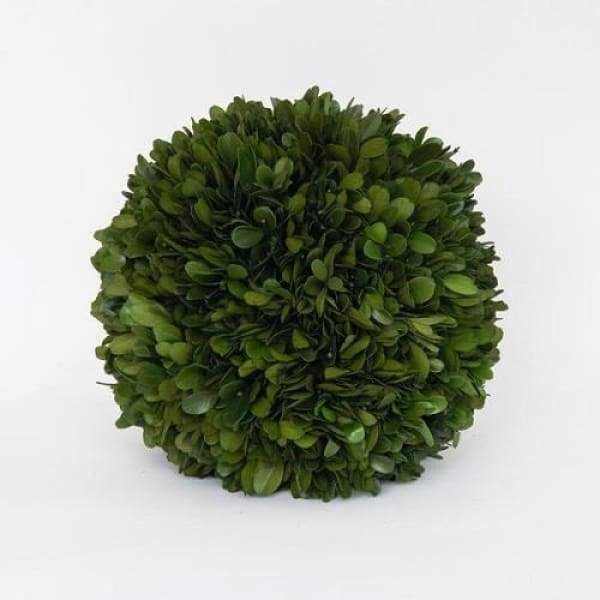 "Boxwood Ball - 6"" - Boutique Marie Dumas"