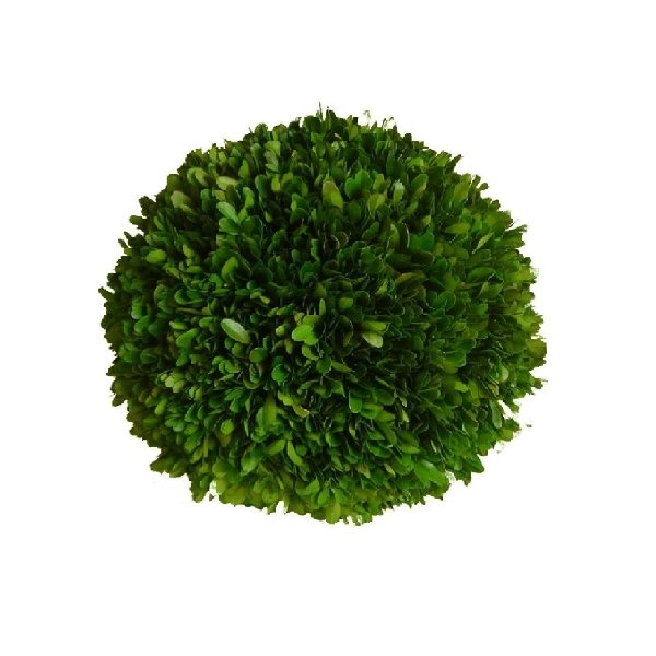 Boxwood Ball - 8'' - Boutique Marie Dumas