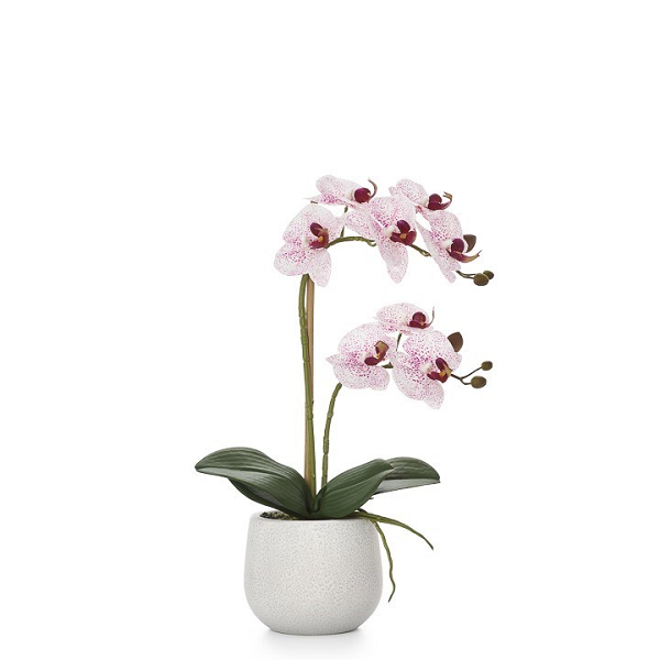 Pink Double Orchid Arrangement in Ceramic Planter