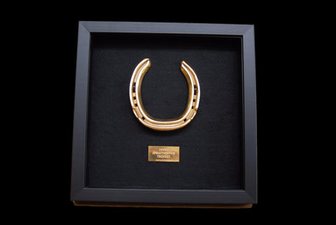 Horseshoe Framed and Personalised in 24k Gold