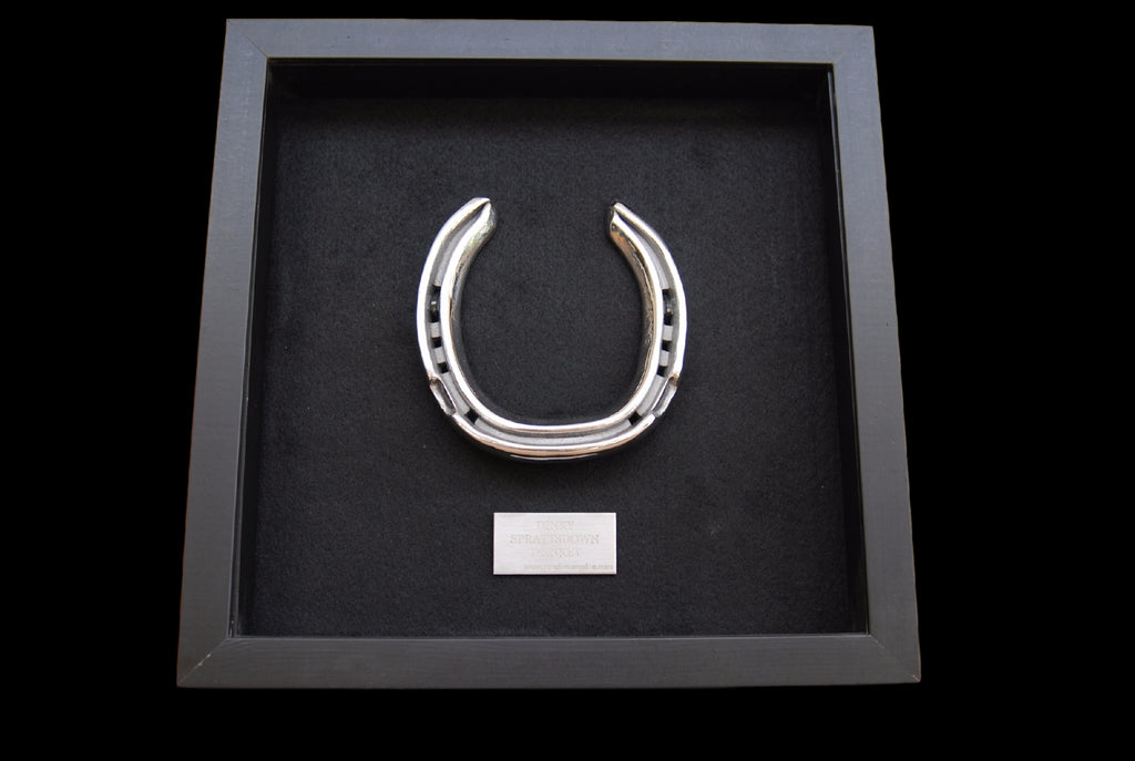 Horseshoe Framed and Personalised in Steel
