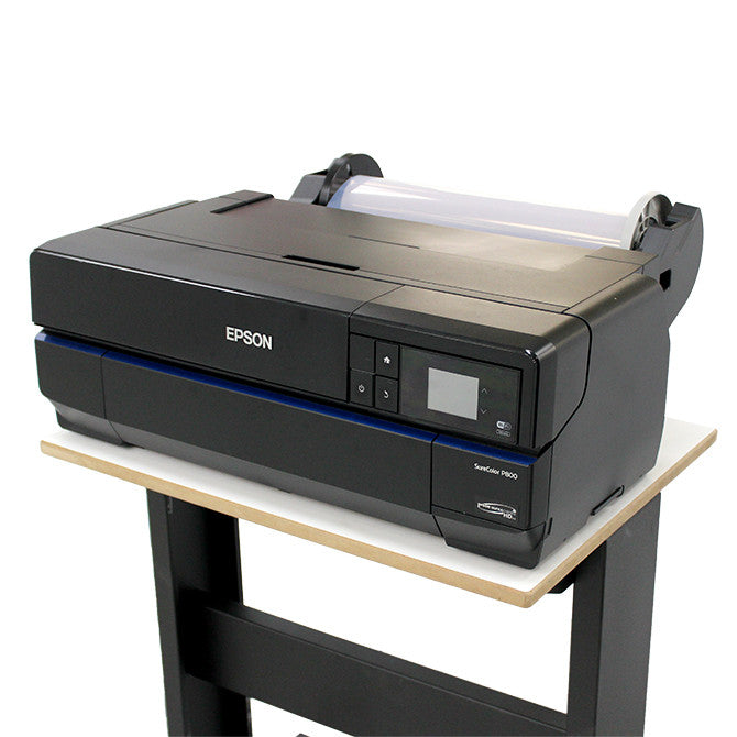 Epson SureColor P800 for Film Positives and More