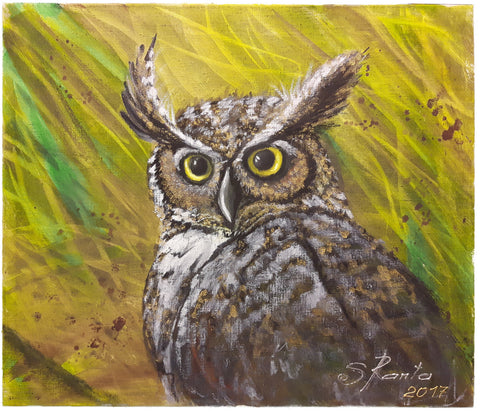 Little Owlet - Painting