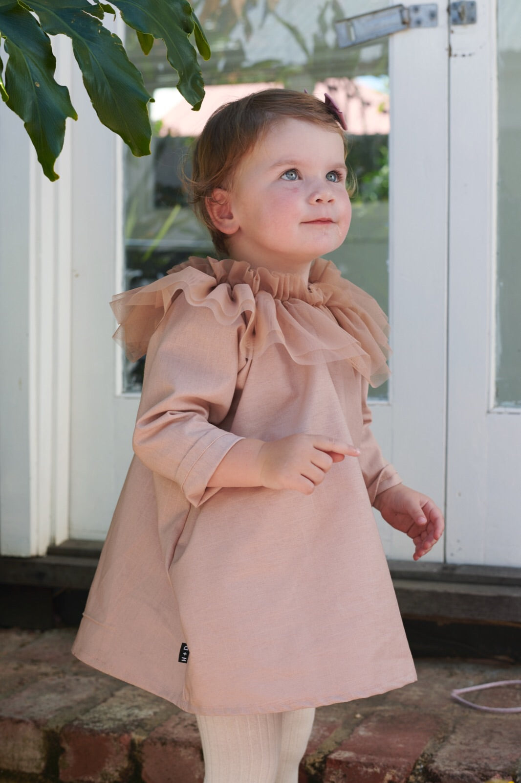 Tulle Collar Smock Dress - Long Sleeve