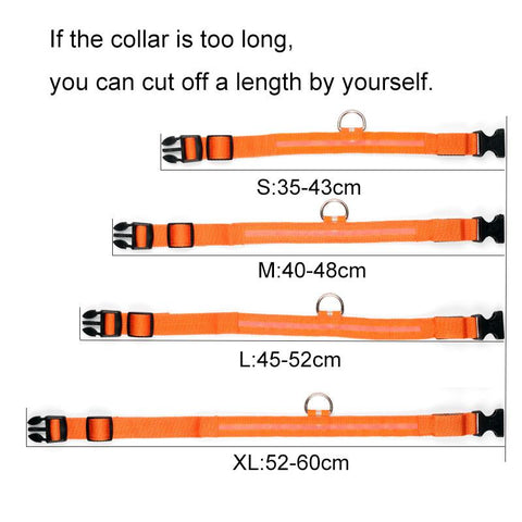 Image of Dog Collar LED - Safety LED Dog Collar