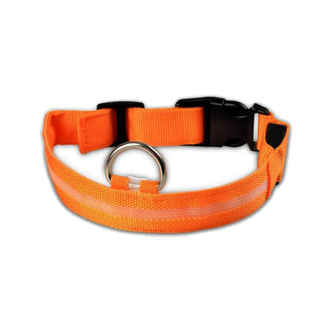 Dog Collar LED - Safety LED Dog Collar