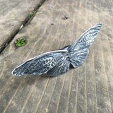 Big cicada wing ring