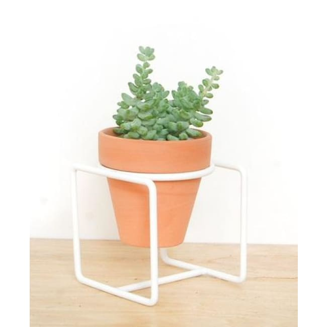 Table Planter White Short - Planters_Table