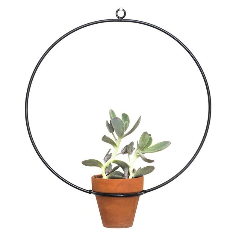 Hanging Circle Black Planter - Planters_Hanging