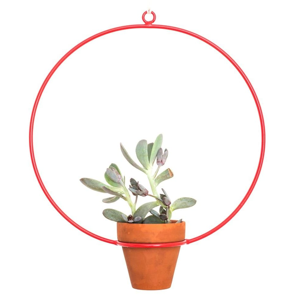 Hanging Circle Red Planter - Planters_Hanging