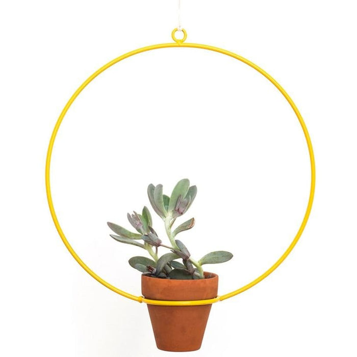 Hanging Circle Yellow Planter - Planters_Hanging