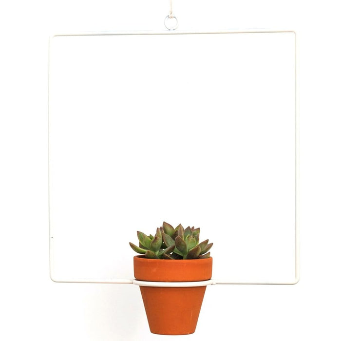 Hanging Square White Planter - Planters_Hanging