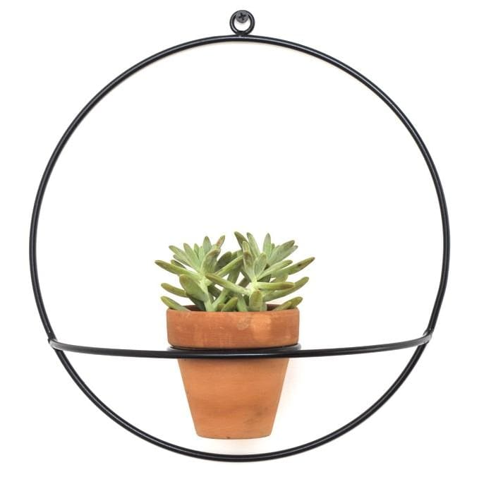 Wall Circle Black Planter - Planters_Wall