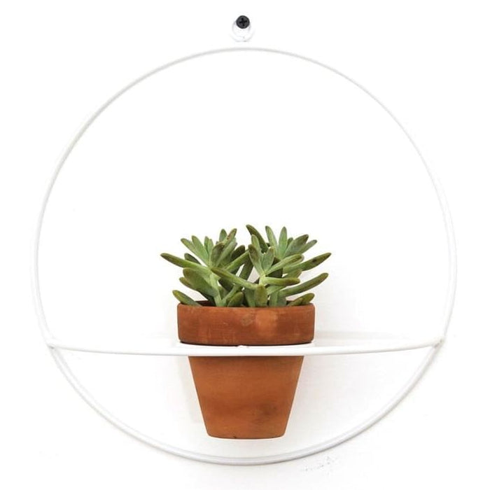Wall Circle White Planter - Planters_Wall