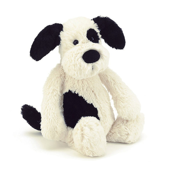 A soft black and white puppy sitting on a white background.