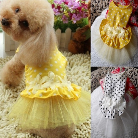 Flower Lace Dress Pet Clothes