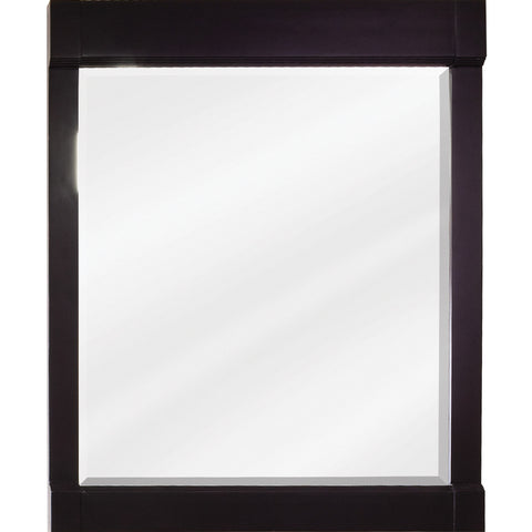 "28""W x 34""H Transitional Style Mirror Espresso Finish"