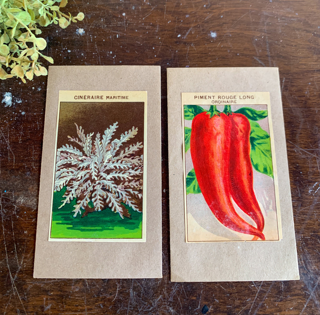 Set of 2 Seed Packet