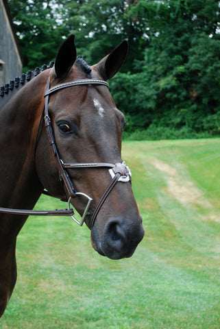 Red Barn Matrix Figure 8 Bridle