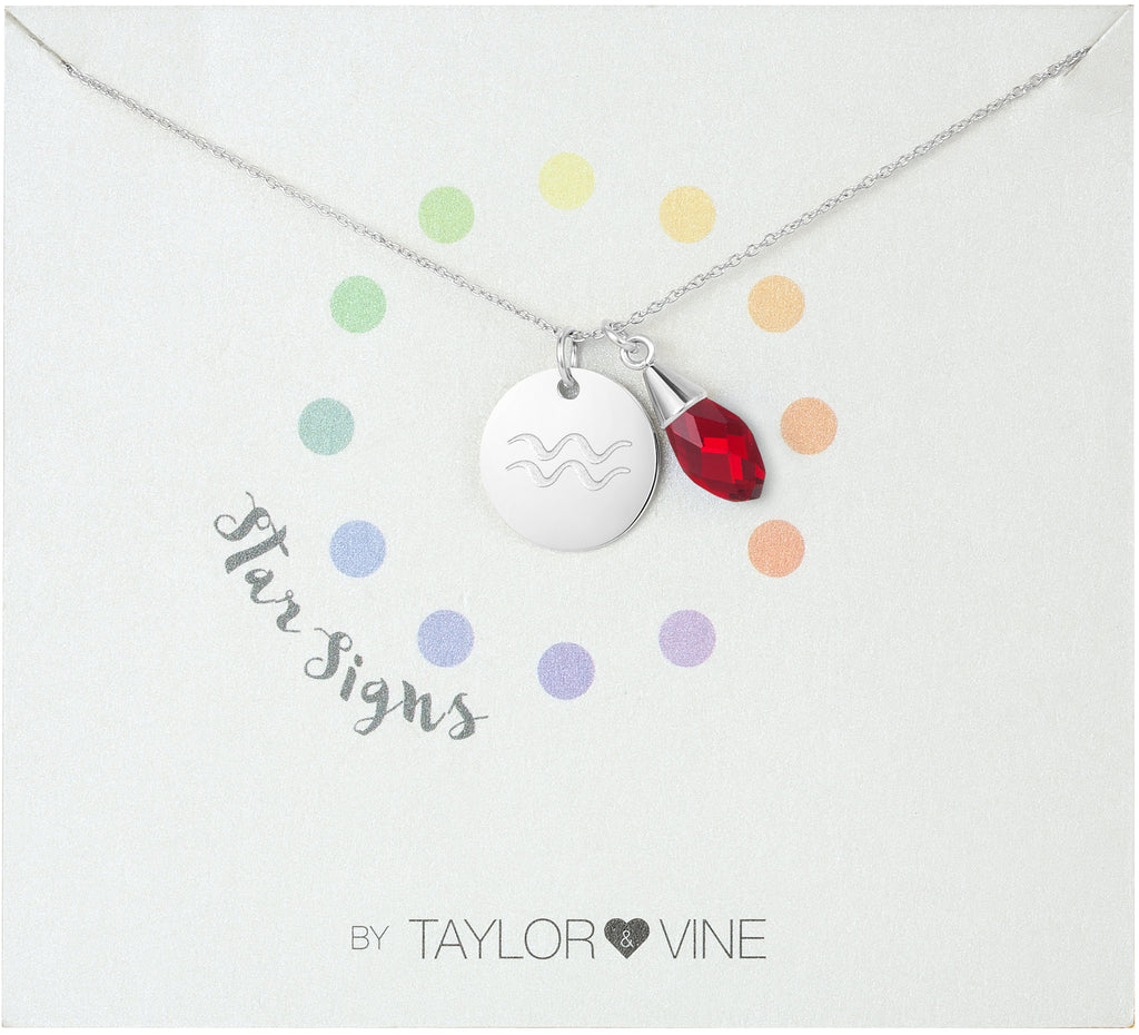 Taylor and Vine Star Signs Aquarius Silver Necklace with Birth Stone