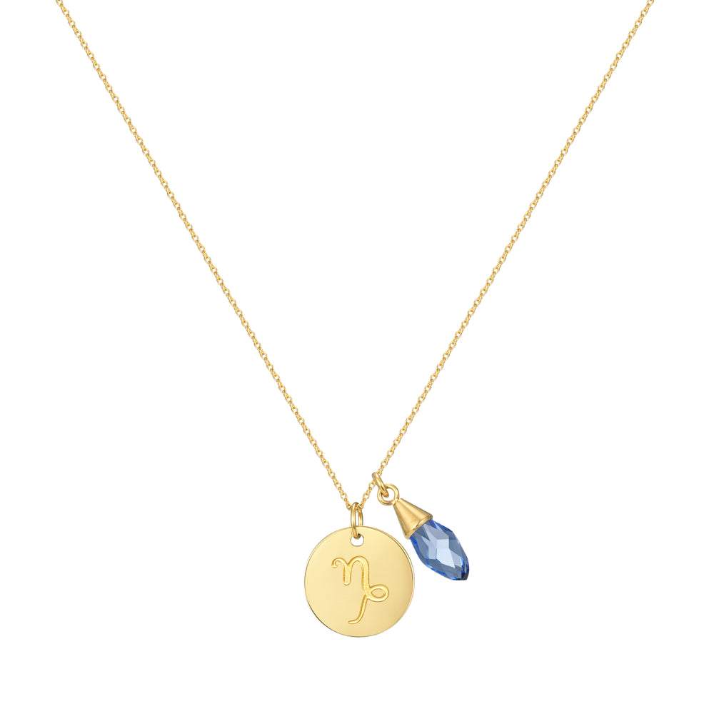 Taylor and Vine Star Signs Capricorn Gold Necklace with Birth Stone 1