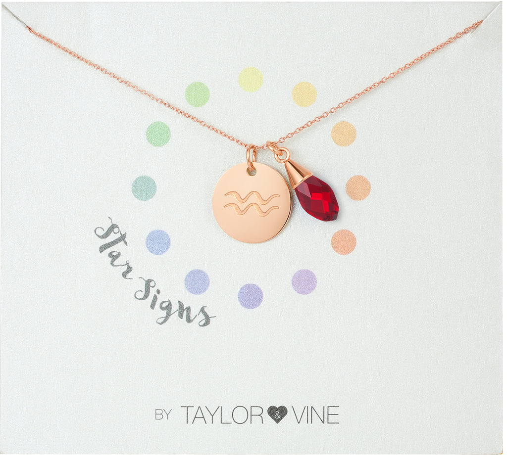 Taylor and Vine Star Signs Aquarius Rose Gold Necklace with Birth Stone