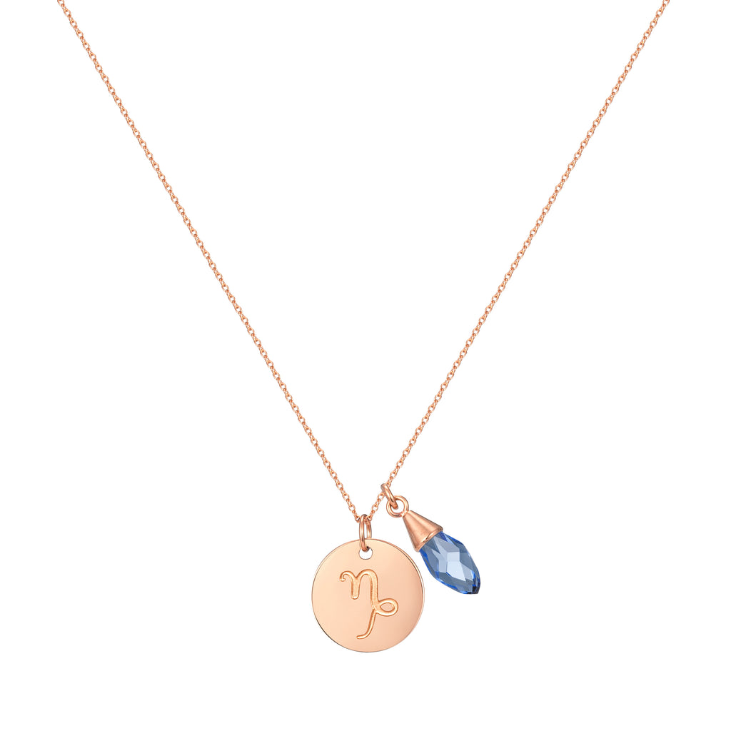 Taylor and Vine Star Signs Capricorn Rose Gold Necklace with Birth Stone 1