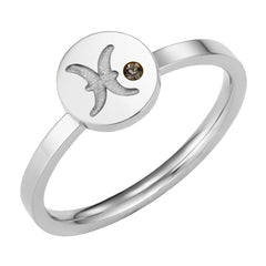 Star Signs Pisces Horoscope ring with CZ Amethyst Birth Stone Silver