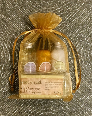 Back To Earth- Travel Gift Set