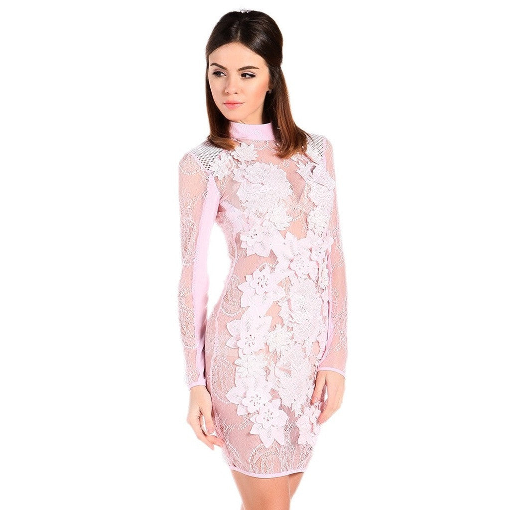 Pink Sheer Party Dress