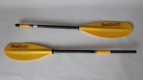 SeaBird Carbon paddle
