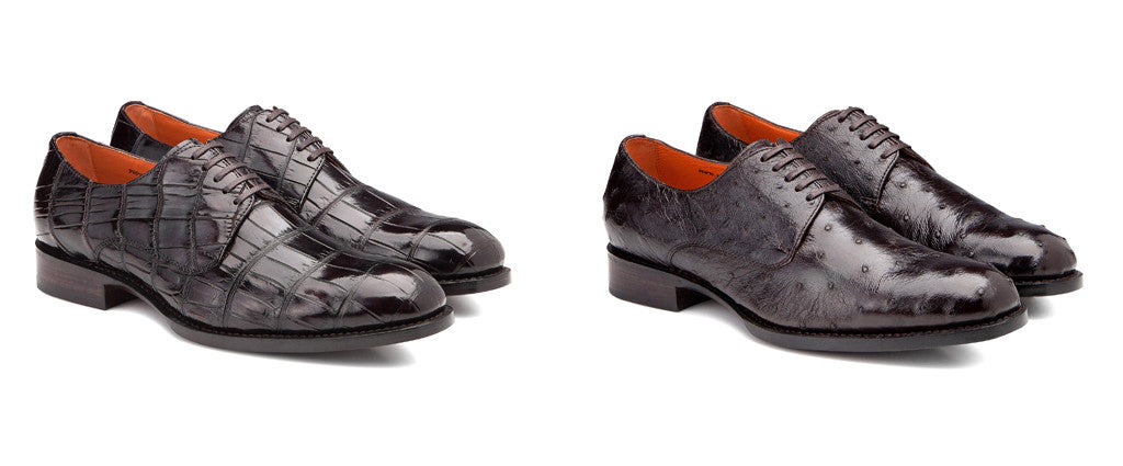 SALLE PRIVÉE Logan Crocodile Derby & Logan Ostrich Derby Shoes