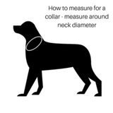 Hamish McBeth Collar Measuring Guide