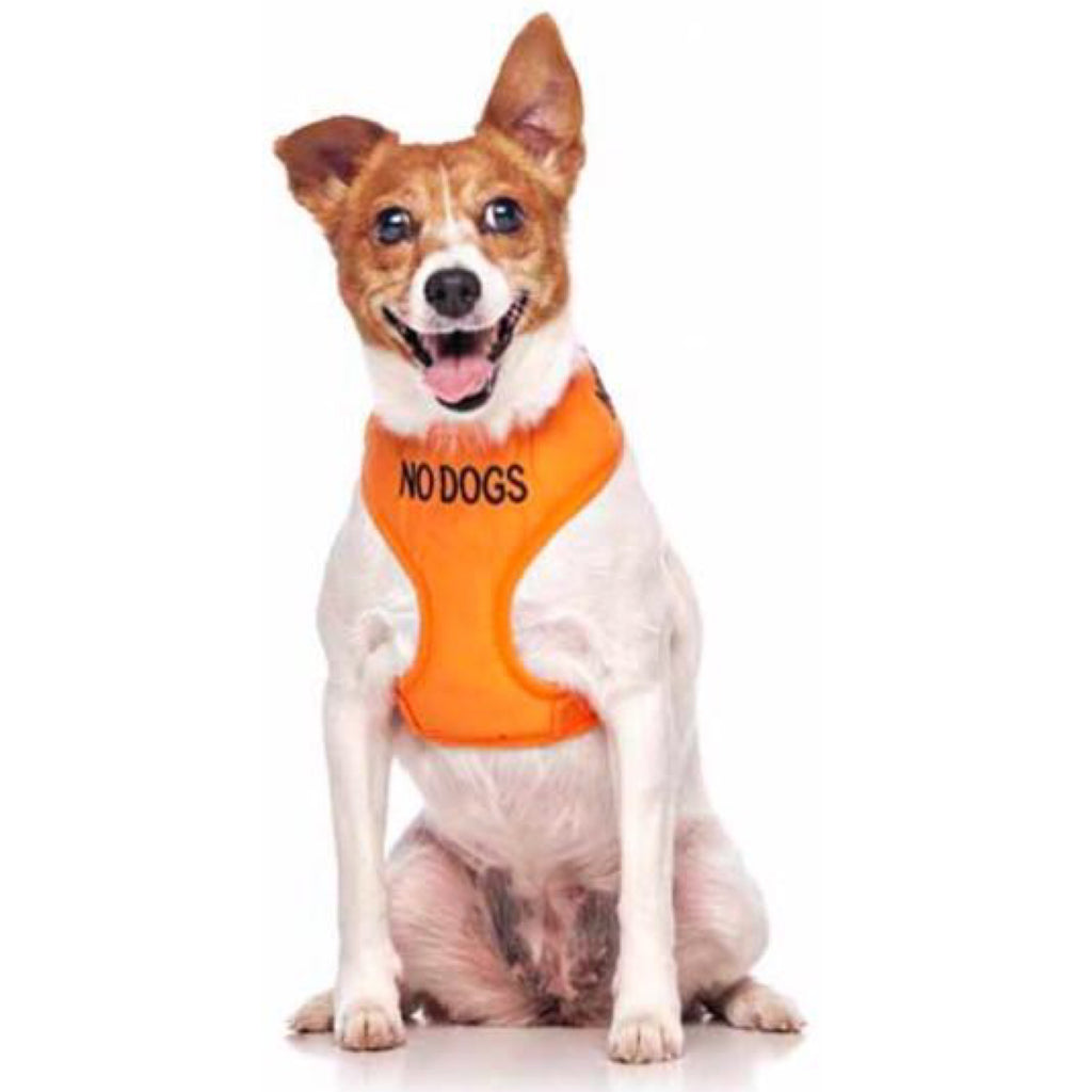 Friendly Dog Collars Vest Harness No Dogs