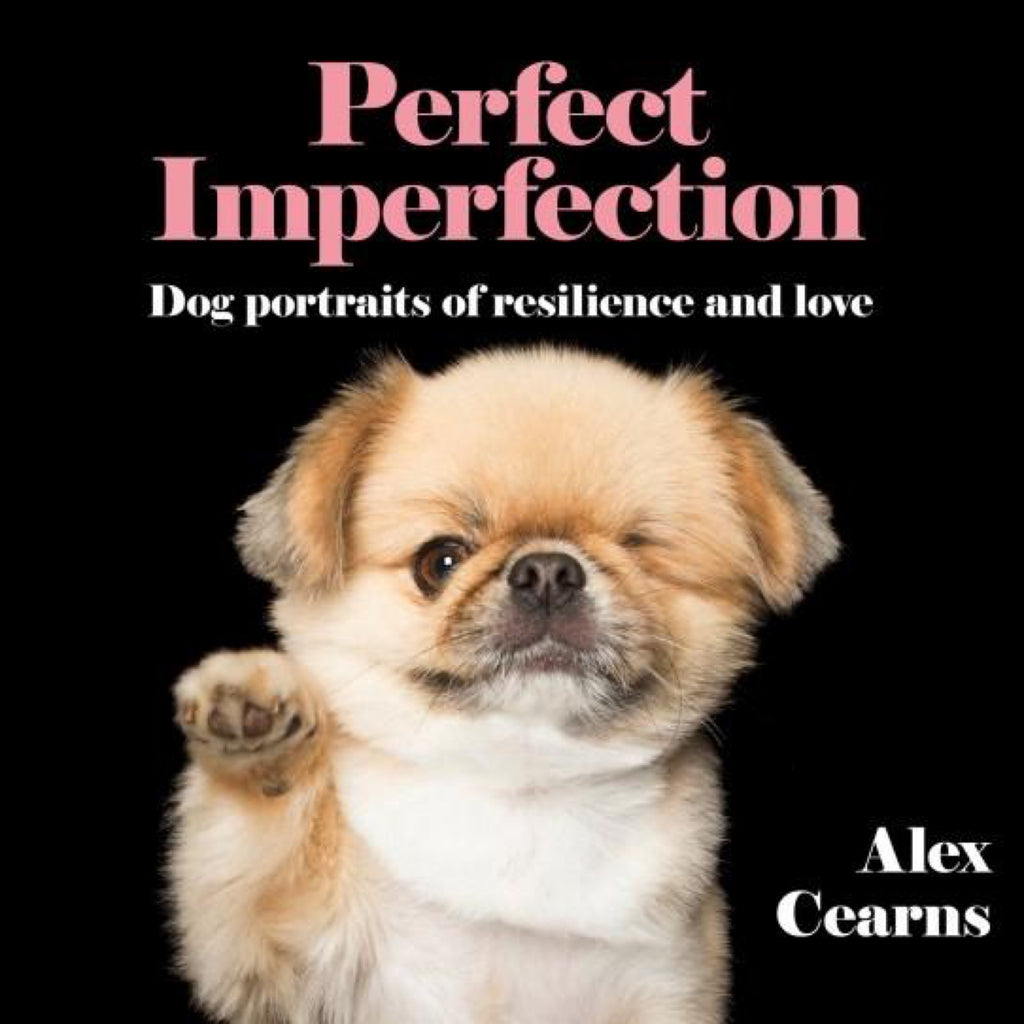 Book Perfect Imperfections