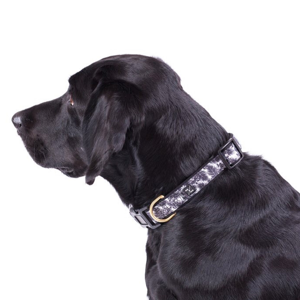 Dog Collar Mog & Bone Neoprene Tropical Leaf Black Large