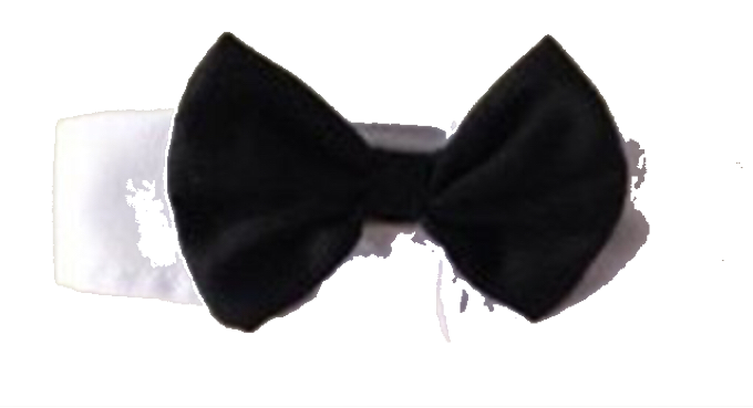 Pampet Dog Bow Tie & Collar