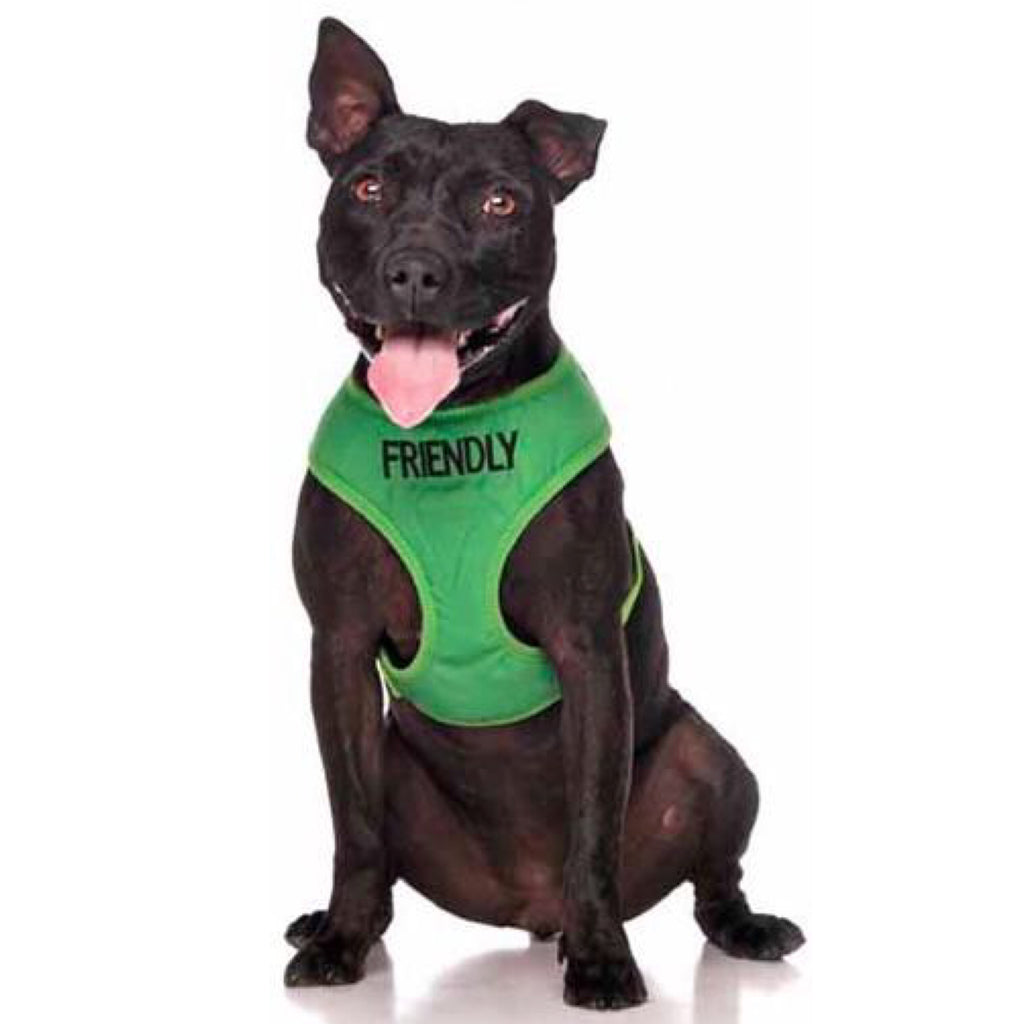 Friendly Dog Collars Friendly Vest Harness